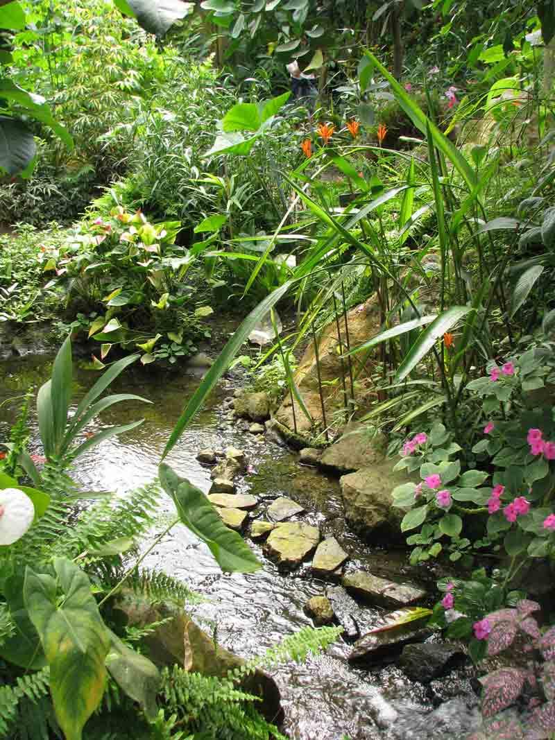 cascade-naturospace