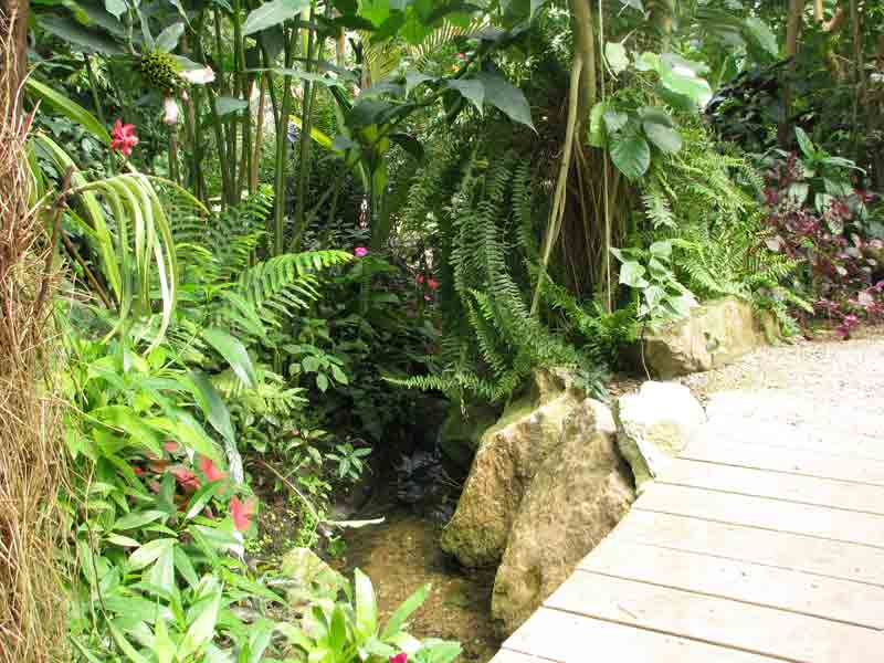jardin-tropical-naturospace
