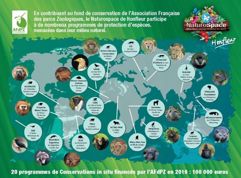 vacances de Noël 2020 à Honfleur Normandie
